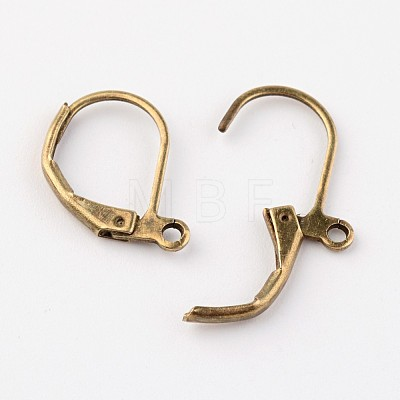 Brass Leverback Earring FindingsEC223-NFAB-1
